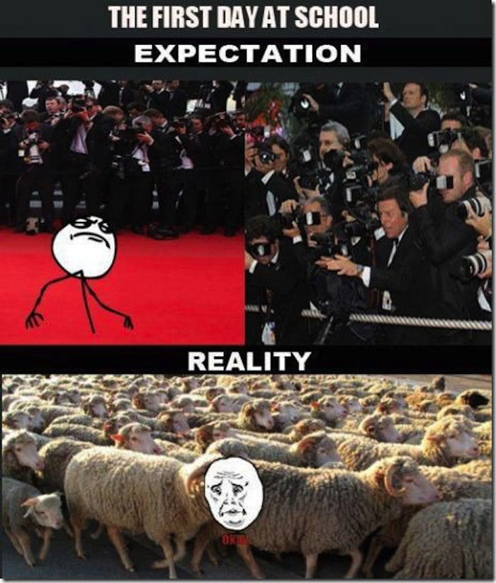 Meme-Expectations-VS-Reality-res