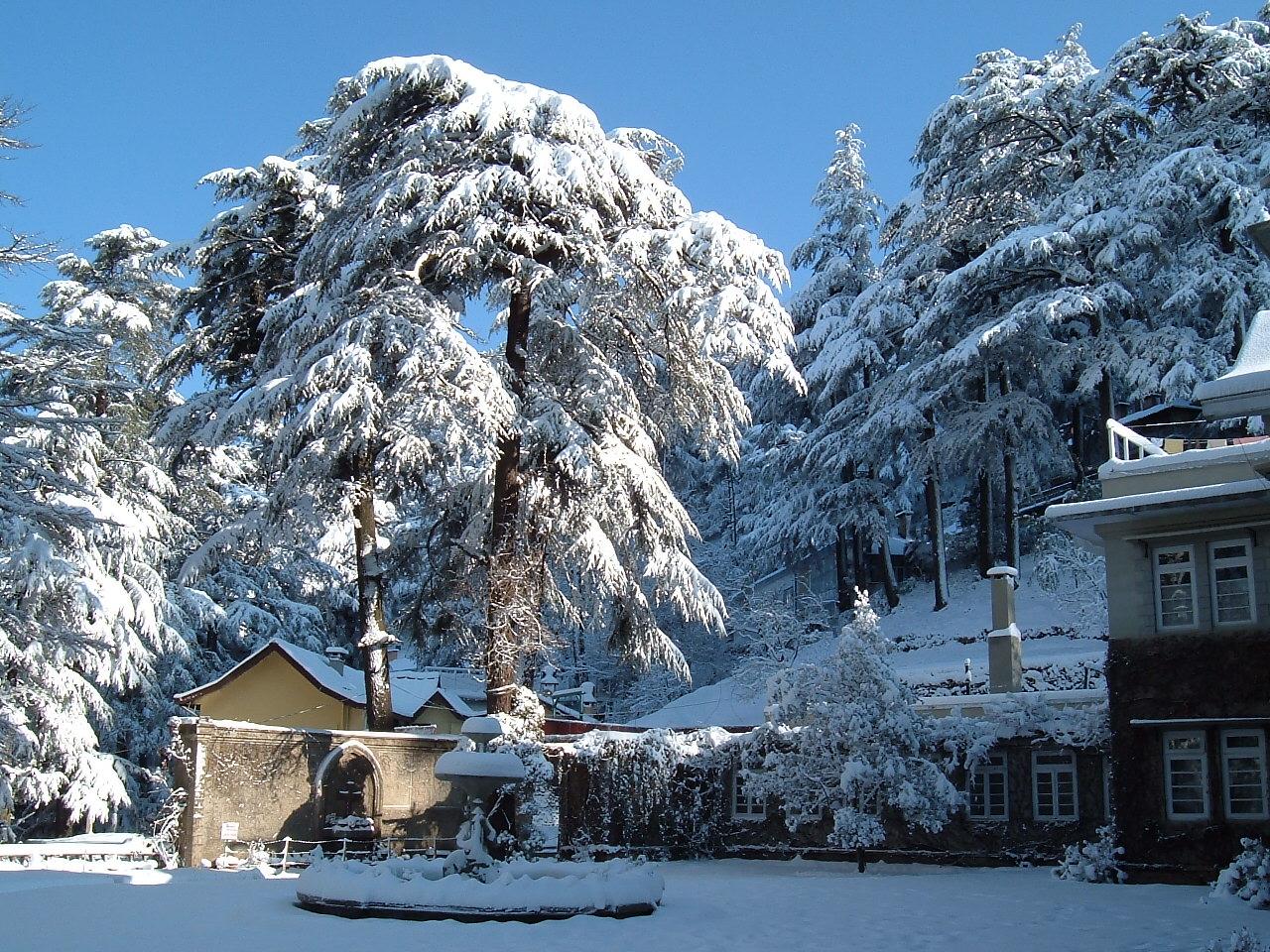 shimla_snow_season