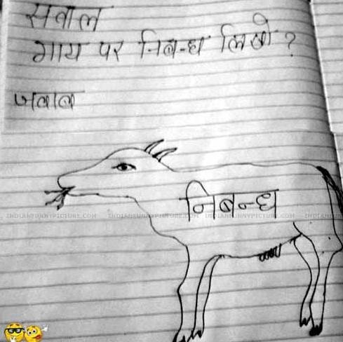 Gai-Par-Nibandh-Likho