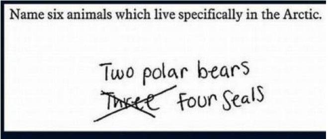brilliant-kids-test-answers-14