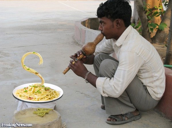 http://www.freakingnews.com/pictures/102500/Indian-spaghetti--102917.jpg