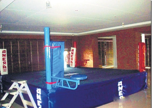 Shahrukh-Khans-boxing-ring-gym-mannat_thumb