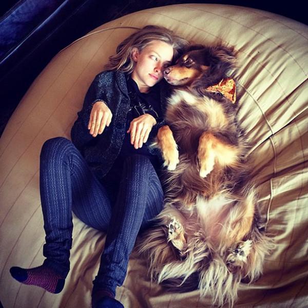 like-owner-like-pet-36__605