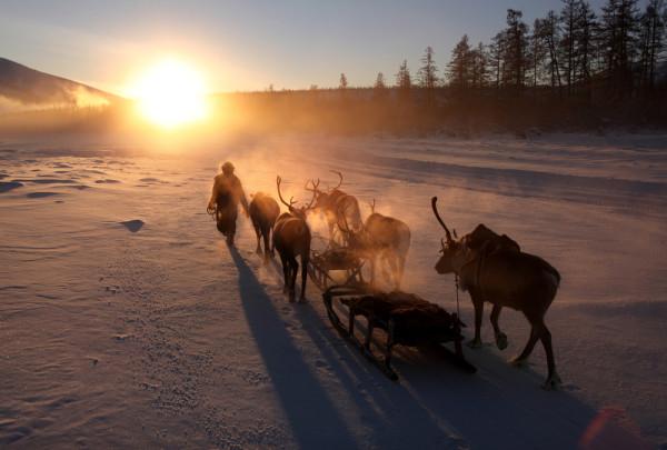 reindeer-herder-siberia-yakutia