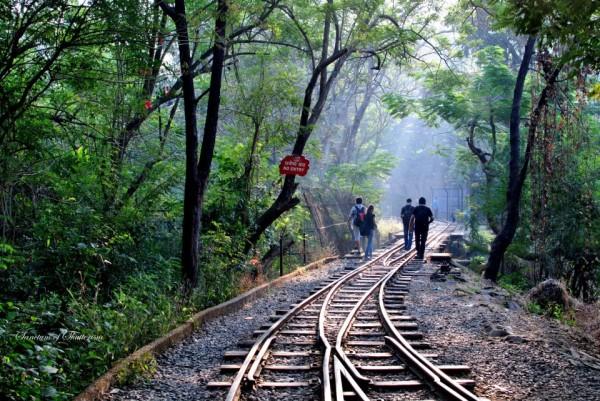 SGNP-Amazing Maharashtra