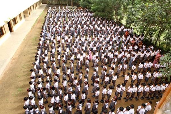school23