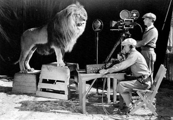 The MGM Lion (1929)