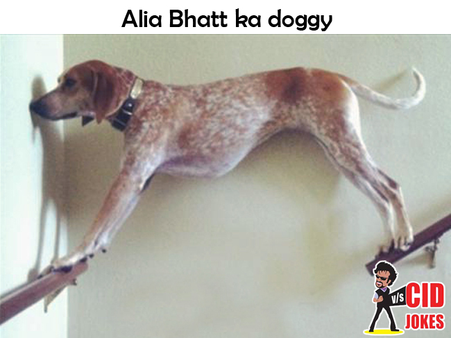 aliabhatt