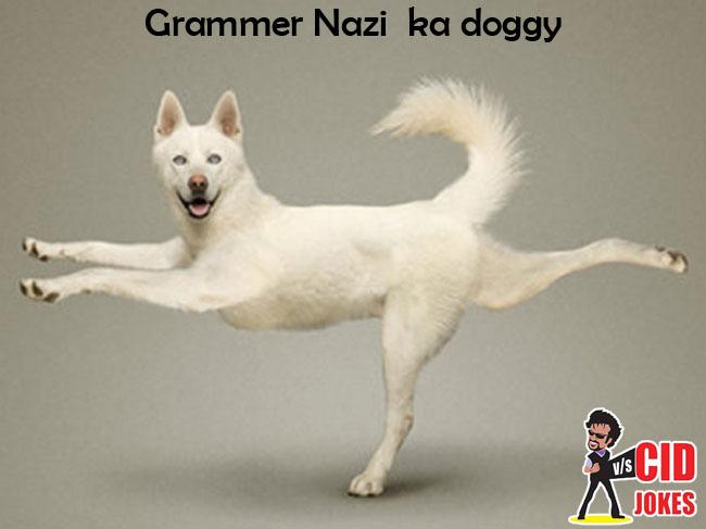grammer nazi