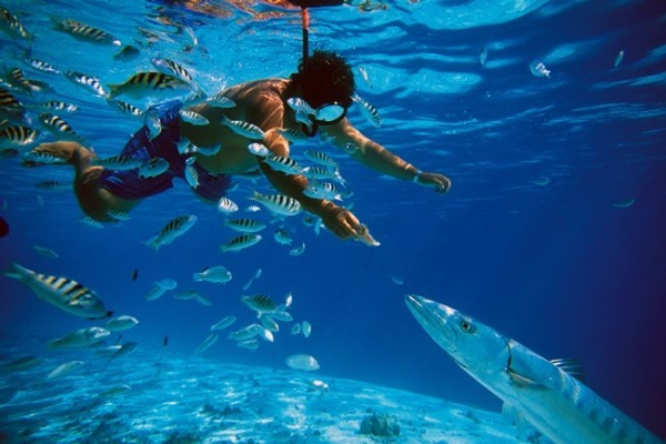 m-island-20trip-20with-20snorkelling-20-1-