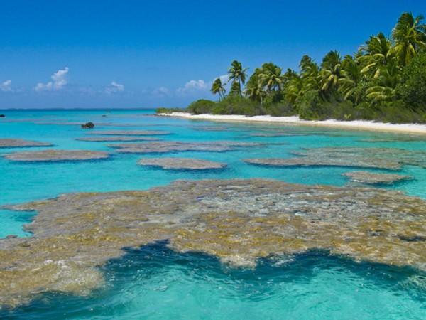 pacific-islands-art
