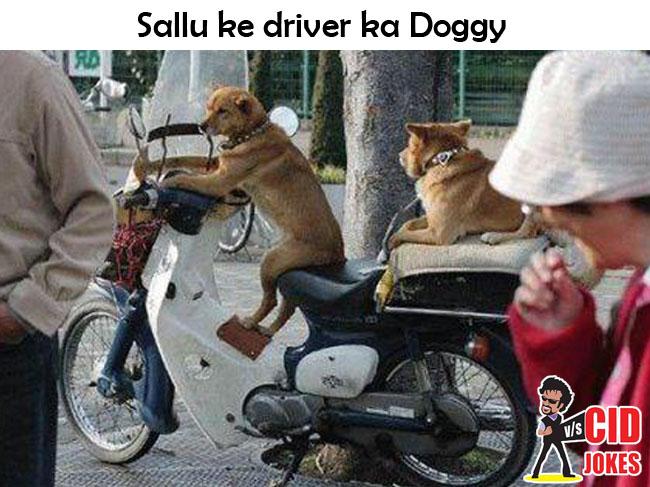 sallu_driver