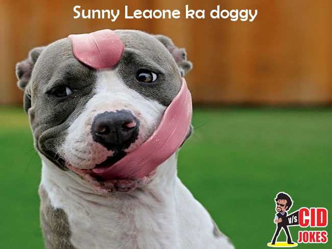 sunny leaone