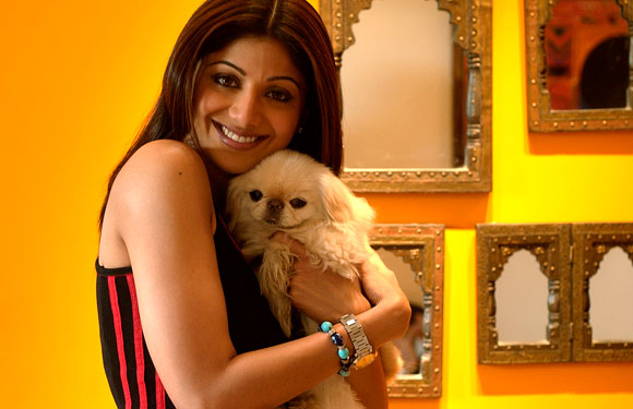 shilpa-shetty-poses-with-her-pet-dog_139807317570