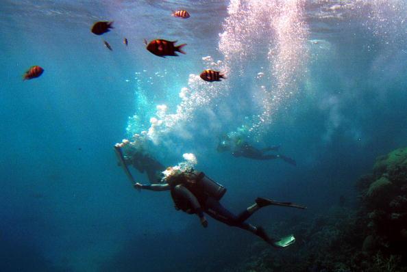 27 Jun 2000: Wendy Craig-Duncan a Marine Biologist on the Great Barrier Reef, Australia, carries the Sydney Olympic torch underwater at Agincourt Reef, Great Barrier Reef, Queensland, Australia. Mandatory Credit: Adam Pretty/ALLSPORT