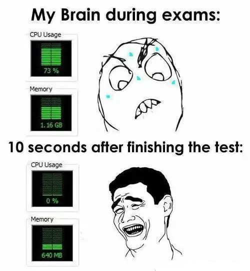 my brain 13 memes for students appearing for board exams rvcj media