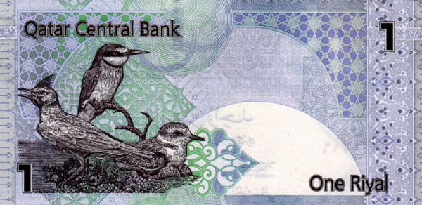 Beautiful Currency Notes qatar
