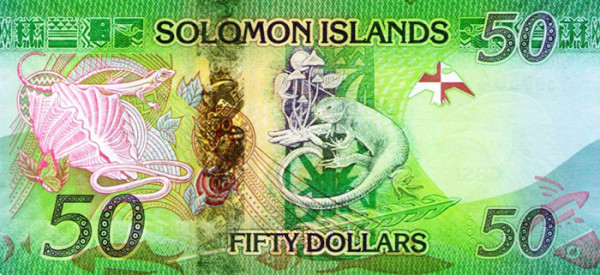 Beautiful Currency Notes solomon