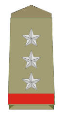 Assistant Police Inspector