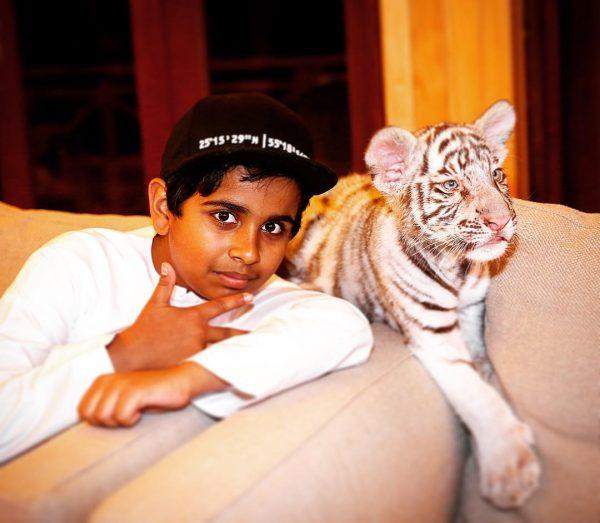tiger wala pic