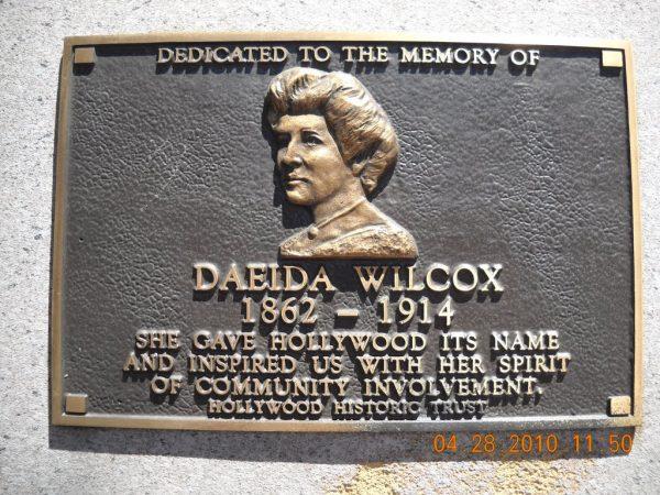 daeida-wilcox-beveridge
