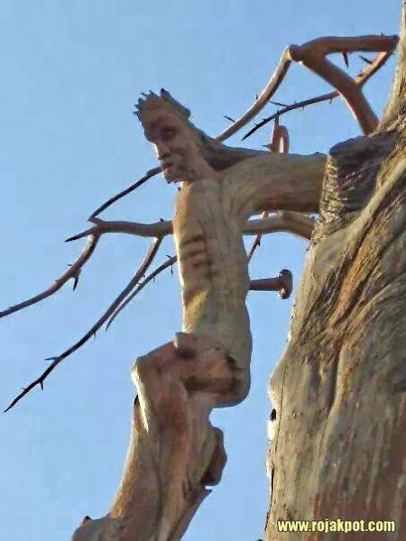 jesus-tree-2