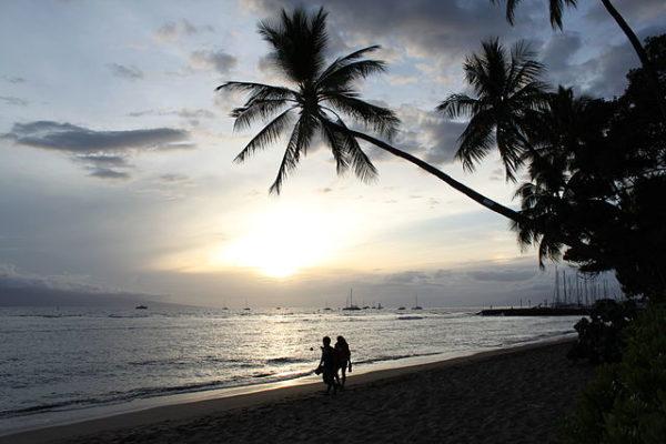 https://upload.wikimedia.org/wikipedia/commons/thumb/8/8d/Lahaina%2C_Maui%2C_Hawaii_%2814825497932%29.jpg/640px-Lahaina%2C_Maui%2C_Hawaii_%2814825497932%29.jpg