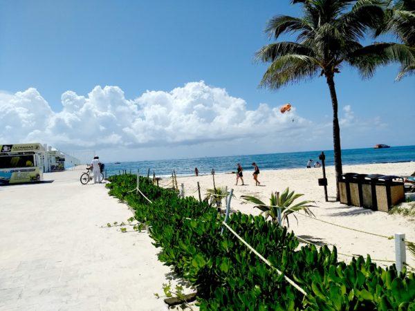 https://images.pexels.com/photos/1113686/pexels-photo-1113686.jpeg?cs=srgb&dl=mexico-playa-del-carmen-riviera-maya-1113686.jpg&fm=jpg