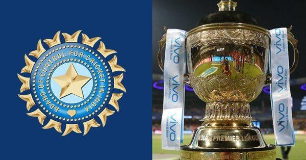 David Warner Responds To Fan Who Says Virat Kohli's RCB Will Win The IPL This Year